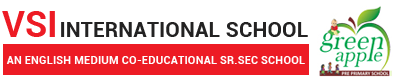 VSI International Sr Sec School in jaipur Logo